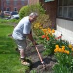 Volunteer working in flower bed